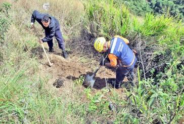 Identificaron a dama maniatada y enterrada en Las Dalias