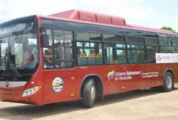 258 unidades Yutong se incorporarán a rutas de transporte