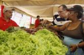 Ferias Agrícolas llevan el alimento del productor al pueblo en Altos Mirandinos