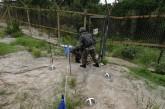 Vuelve tensión en las dos Corea tras intercambio de disparos en frontera