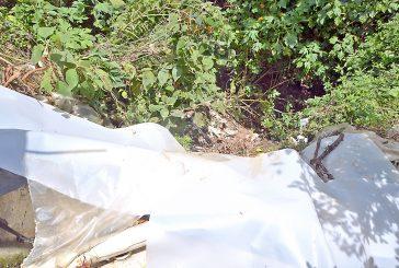 En La Hoyada las torrenteras a punto de desplomarse
