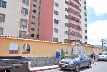 Hallan 20 gatos muertos en residencias Miraflores