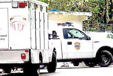 Abatido delincuente en la Panamericana