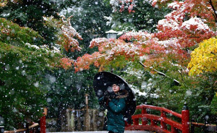 Cae en Tokio la primera nevada después de 54 años