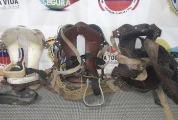 Desmantelada banda dedicada al robo de equinos