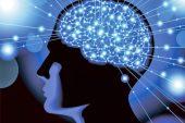 El cerebro, la gran farmacia