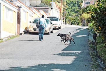 Exigen mayor seguridad en La Yerbabuena
