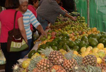 Las frutas traen un sinfín de vitaminas