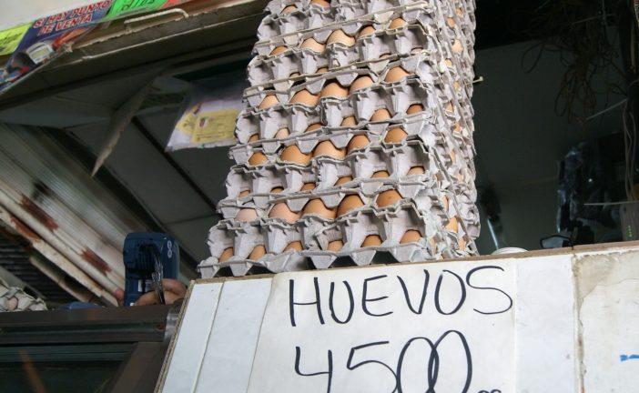 Cartón de huevos podría llegar a los Bs. 10 mil