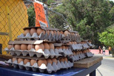 Precio del cartón de huevos  se acerca a los 10 mil bolos