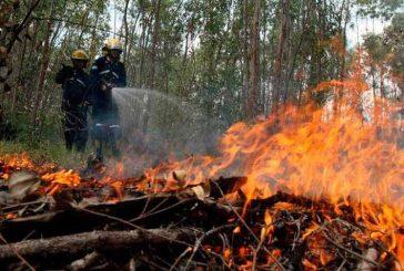 Declaran alerta roja en norte de Guatemala por incendios forestales