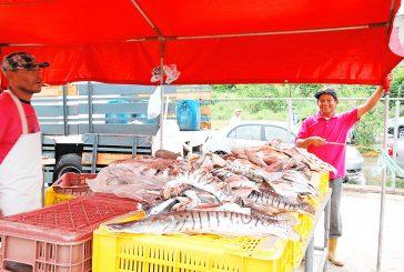 Ventas de pescado subieron un 20%