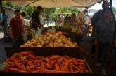 Escasez de semillas dispara  precios de vegetales