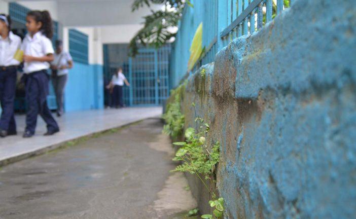Urge una pinturita para la Rodríguez López