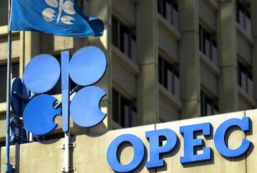 Emiratos Árabes: No es necesaria una reunión extraordinaria de la OPEP