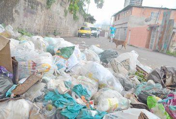 Piden recolección de basura en calle La Unión