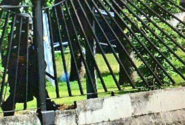 Muere manifestante a la altura de la base militar La Carlota