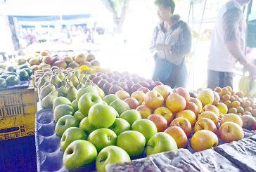 Kilo de manzana importada  se ubica en Bs. 15 mil