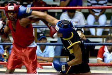 Boxeo suspendió comicios por amparo cautelar del TSJ
