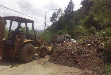 100 casas afectadas y 50 derrumbes por lluvias