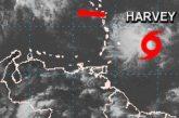 Protección Civil alerta sobre tormenta Harvey al norte del país