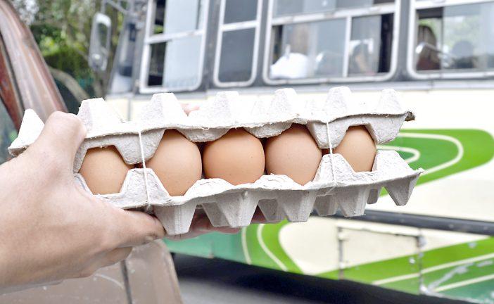 Cartón de huevos cuesta  una semana de salario