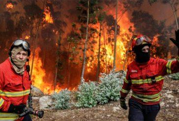 Dos grandes incendios forestales mantienen en vilo a Portugal