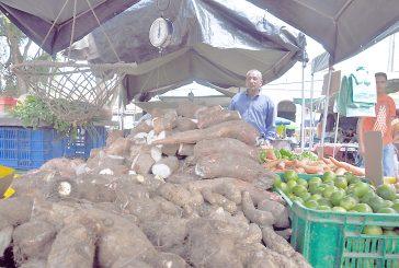 Frenan propagación de ventas informales en Carrizal