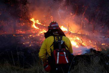 Sube a 40 el número de víctimas mortales por los incendios de California