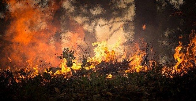 Incendios en California dejan 11 muertos