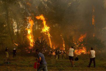 Mueren dos personas en incendios que azotan Galicia.