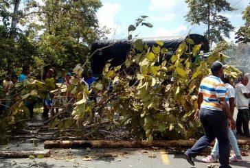 Cuatro muertos y 19 heridos en protesta de cocaleros colombianos