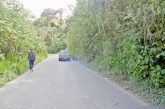La vegetación se devora  la vía principal de El Trigo