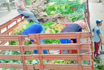 Más de 200 toneladas de alimentos  distribuyó el Ejecutivo Regional