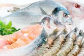 Pescado resulta más económico que la carne