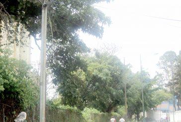 Fallas de alumbrado público continúa azotando el final de la av. Bolívar