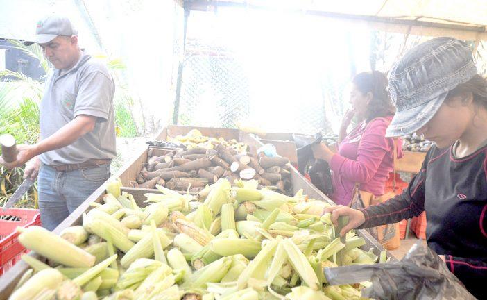 Alcaldía meterá la lupa a mercados itinerantes