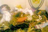 1.5 toneladas de chatarra han sido decomisadas
