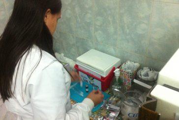 Rosario Milano vacuna a 89 niños de San Antonio
