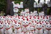 En Tokio, un templo de 'gatos de la suerte' atrae a 'instagramers' de todo el mundo