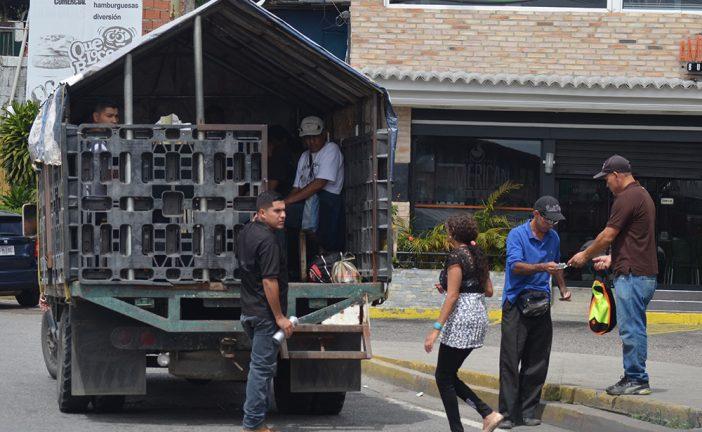 Perreras comienzan a verse en San Antonio de los Altos
