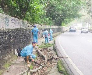 Atienden derrumbes en la Panamericana